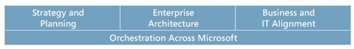 Mike Walker's Blog: Microsoft Enterprise Strategy Program